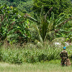 MONUSCO soldiers guarding an airstrip in North Kivu province.  Photo credit: NRC/Christian Jepsen. March 2017
