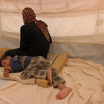 Ishwaq, her husband and their three children (all under the age of 12) managed to escape Fallujah on Monday 23 May 2016. They only managed to bring with them two towels, one bag with their I ...