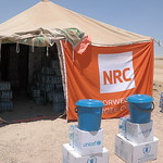 NRC is present in Amiriyat Al Fallujah providing newly displaced families from Fallujah with water, food parcels, hygiene kits and baby kits.  Photo: NRC/Becky Bakr Abdulla