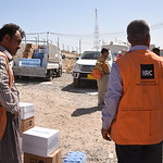 NRC is present in Debaga camp providing emergency aid, food, water, hygiene and baby kits to newly-arrived displaced Iraqis.  Photo: Elias Abu Ata/NRC