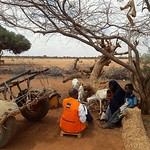 Given the devastating impact of drought in Garsobore village, coupled with the loss of livelihoods in this village NRC through DFID?s IRF funding and in consultation with the local authori ...